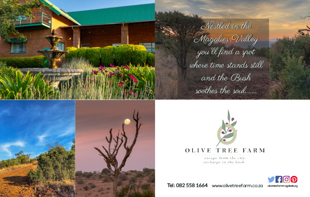 OLIVE TREE FARM, MAGALIESBURG